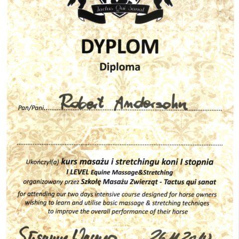 DYPLOM uczestnika szkolenia i warsztatów z masażu koni.