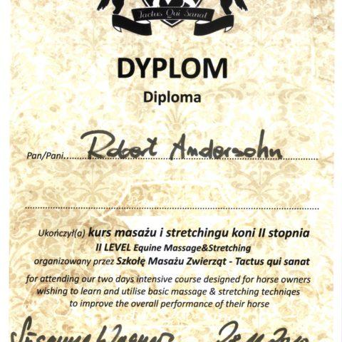 DYPLOM uczestnika szkolenia i warsztatów z masażu, sretchingu i akupresury koni.